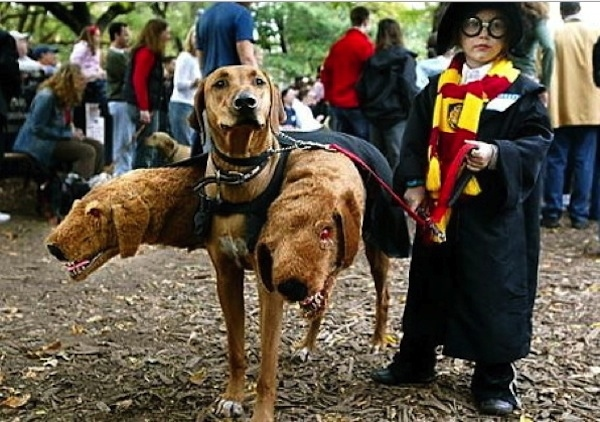 halloween-costumes-ideas