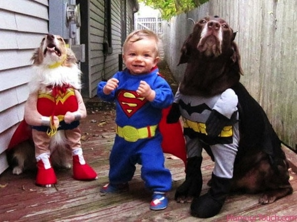 halloween-innovative costumes-for-pets