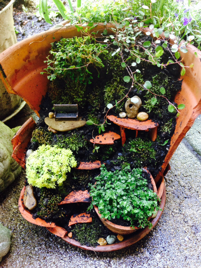 These Gorgeous Fairy Gardens Will Make Your Homes A Little More