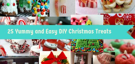DIY Christmas Treats Creative Food Ideas