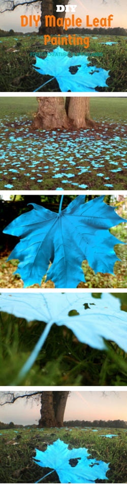 DIY autumn leaf maple leaf arts and crafts paining