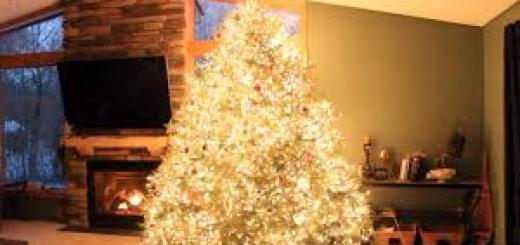 Wawra Christmas Tree Lights Show, christmas tree decoration ideas