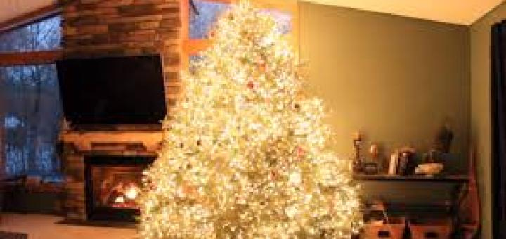 Wawra Christmas Tree Lights Show Decoration Ideas