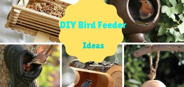 diy bird feeder ideas handmade