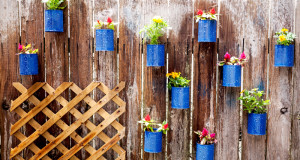 Low-Budget DIY Garden Pots and Containers1