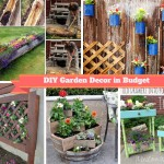 7 Super Low Budget DIY Garden Pots Projects: Part 1