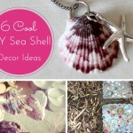 6 Cute Seashell Crafts Ideas. Its o Much Fun. Part: 1