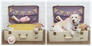 how to recycle a vintage suitcase diy 4