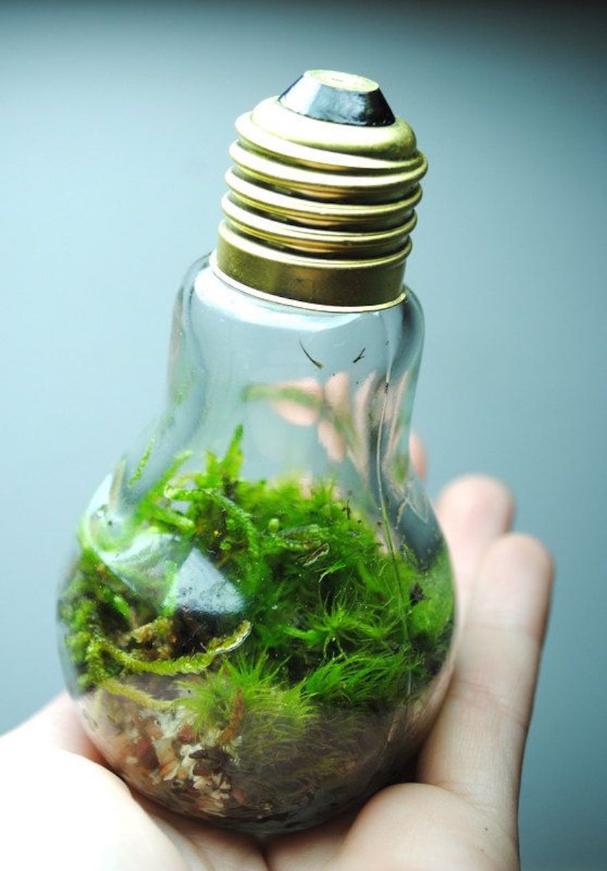 recycle light bulbs diy craft 1