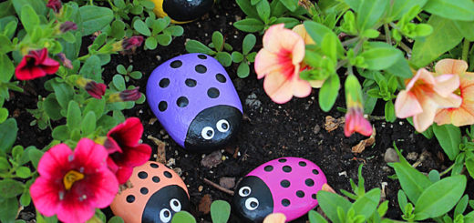 DIY Ladybug Painted Rocks Painting garden