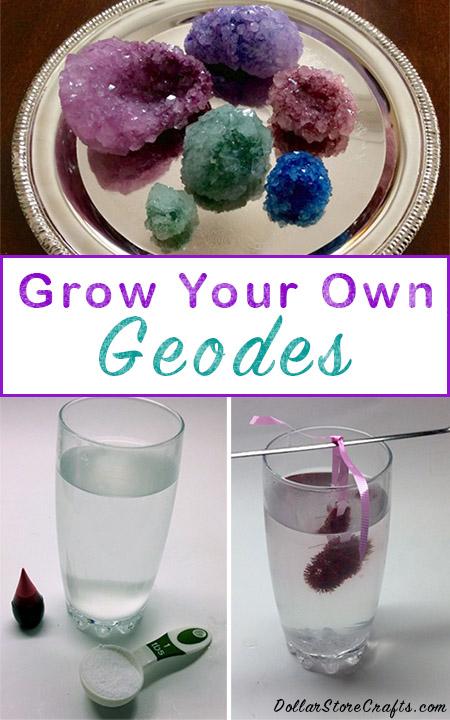 How to Grow DIY Borax Crystals home decor