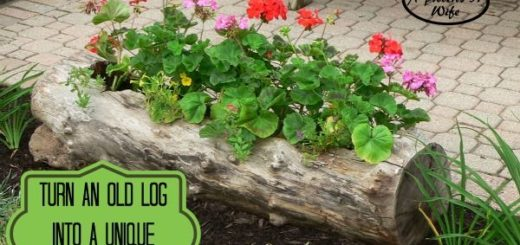 diy planter ideas for garden outdoor hacks