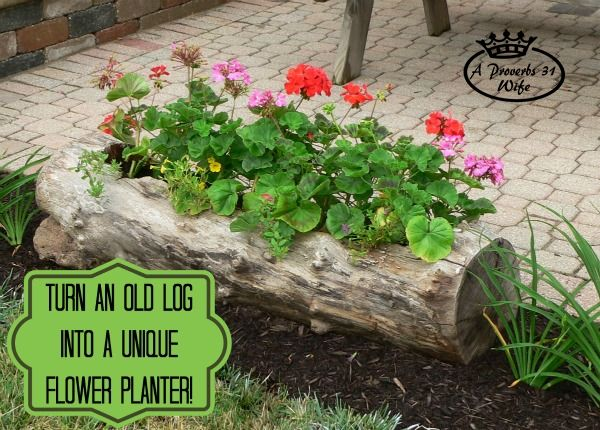 DIY: Turn An Old Into Unique Flower Planter For Your Garden