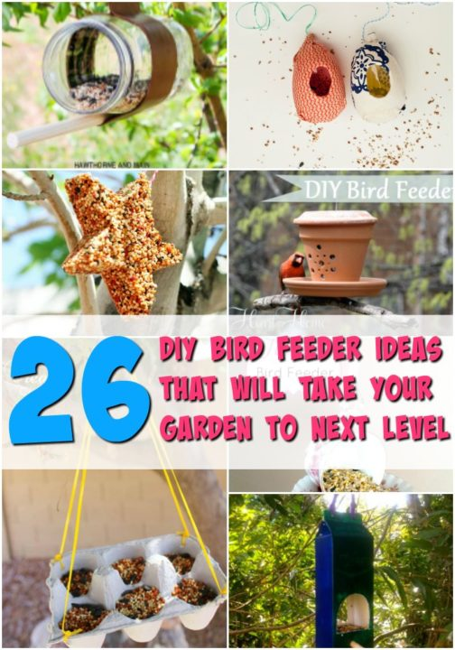 26 diy bird feeder ideas projects