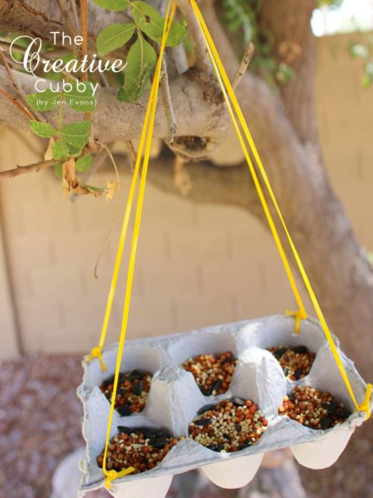 diy Egg-Carton-Bird-Feeder