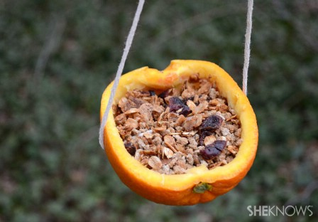 diy bird feeder 10