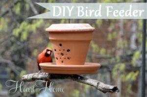 26 Easy DIY Bird Feeders That Will Attract Birds In Your Garden