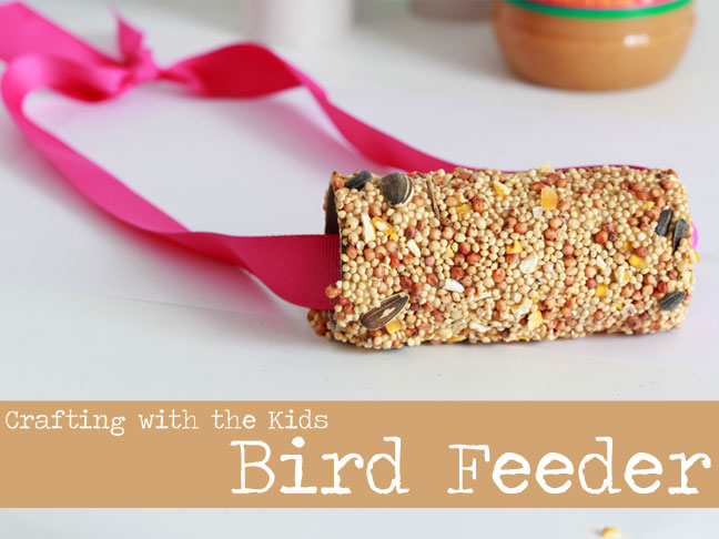 diy bird feeder how to make