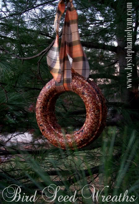 diy birdfeeder Homemade-Birdseed-Wreath-