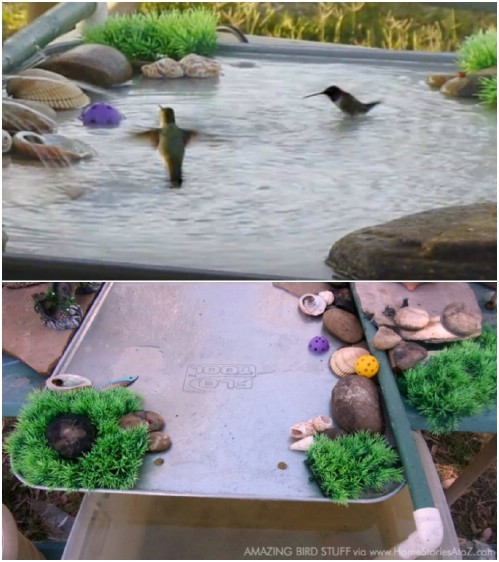 DIY Bird Baths ideas